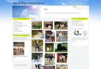 Web Design New Forest Ray of Hope Animal Rescue joomla web site